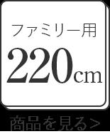 ファミリーサイズ220