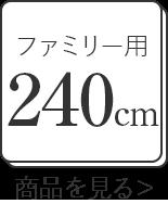 ファミリーサイズ240